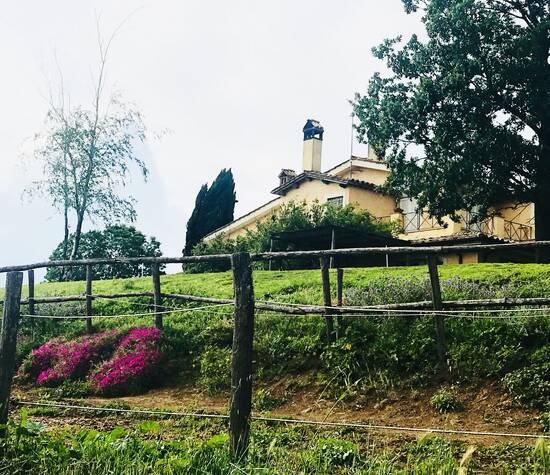 Gelso Della Valchetta
