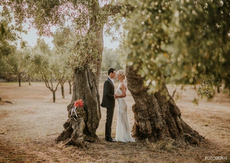 Sposarsi in un campo di Ulivi: tutto l'incanto di una natura incontaminata a Tenuta Monacelli